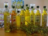 culinary oils cooking Tiddis based on olive oil with herbs REGIONAL