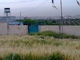 ارض مميزة وقريبة من عمان للبيع من المالك وبدون وسيط - صورة مصغرة