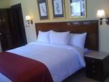 عيد الربيع 2011ميدترنين سويتس الأسكندرية للأجنحة الفندقية - صورة مصغرة