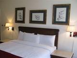 اقضى شم النسيم2011ميدترنين سويتس الأسكندرية للأجنحة الفندقية - صورة مصغرة
