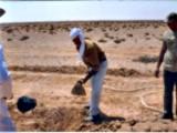اراضي زراعيه بوادي النطرون - صورة مصغرة