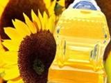 زيت عباد الشمس باسعار منافسة - صورة مصغرة