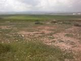 ارض للبيع زراعية مميزه قرب جامعة اربد الاهلية تصلح مزرعه مطلة ومميزه جدا - صورة مصغرة