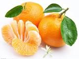 البرتقال واليوسفي من الصين