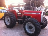 Brand New Massey Ferguson 385 Tractors for Sale - صورة مصغرة
