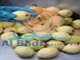 جوافة مصرى مجمدة للتصدير - صورة مصغرة