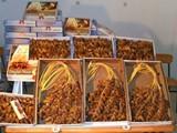 كميات كبيرة من التمور التونسية للتصدير باسعار مغرية - صورة مصغرة