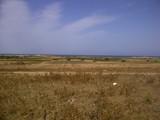ارض للبيع تقع على شاطئ البحر بكركوان قليبيه - صورة مصغرة