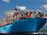 تخليص جمركى ميناء حمد - صورة مصغرة