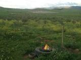 أراضي للبيع صالحة للزراعة و تربية المواشي - صورة مصغرة