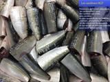 سمك مجمد جاهز لتصدير جودة عالية - صورة مصغرة