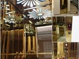 مصاعد أطلس للفلل والقصور في ابوظبي وجميع انحاء الامارات - صورة مصغرة