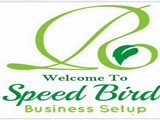 Business Setup in Dubai PRO Services Typing Services