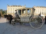 العربات الملكية الفاخرة التي تجرها الخيول