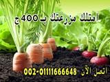 بأرخص سعر للفدان فى الوطن العربي 400 ج - صورة مصغرة
