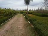 أرض مزرعة 5 هكتار مع منزل صغير 12 كم في مراكش - صورة مصغرة