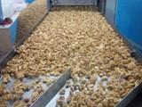 تصدير جميع المواد الغذائيه من اوكرانيا - صورة مصغرة