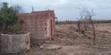 ارض سقوية للبيع باولاد عامر قلعة السراغنة - صورة مصغرة