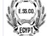 MY Super Star Group Egypt MSSGE